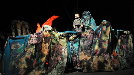 Воронежцы увидели единственного в мире кукольного «Повелителя мух»