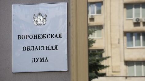 Воронежская облдума предложила составить реестр недобросовестных участников тендеров