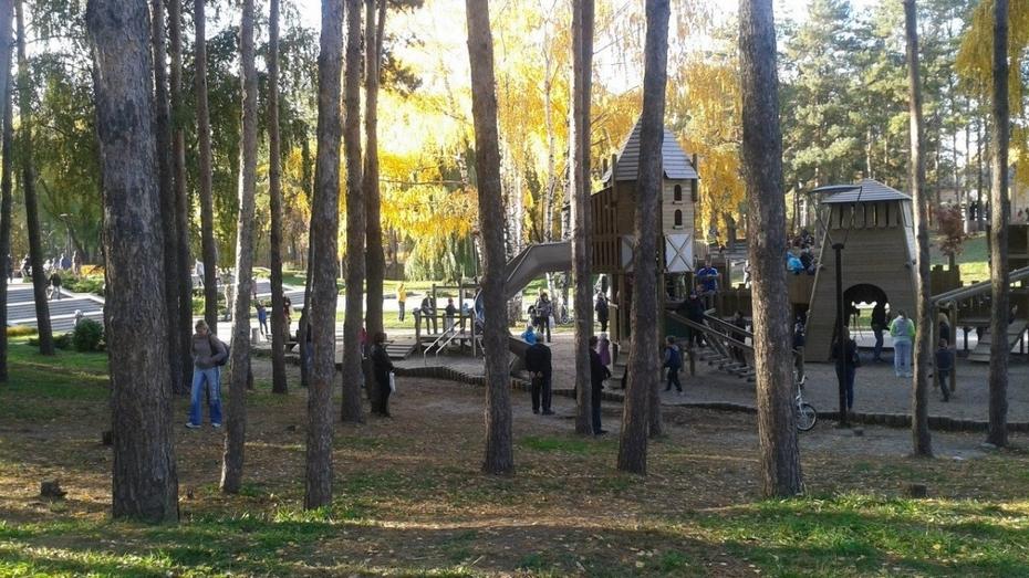 Пользователи Рунета выделили воронежский парк «Алые паруса»