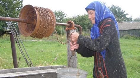 Восемь лет старики нижнедевицкого села черпают воду из колодца, в котором плавают дохлые мыши