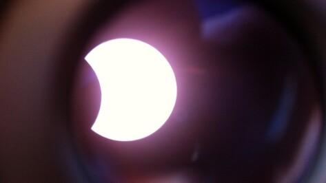 Десятки воронежцев пришли понаблюдать солнечное затмение в парк «Орленок»