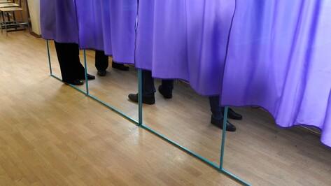 На финишной прямой. Как воронежские наблюдатели подготовились к выборам президента