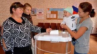 В Нижнедевицком районе явка на выборах составила 89,15%