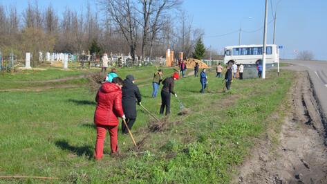 Около 900 жителей Верхнемамонского района приняли участие в областном субботнике