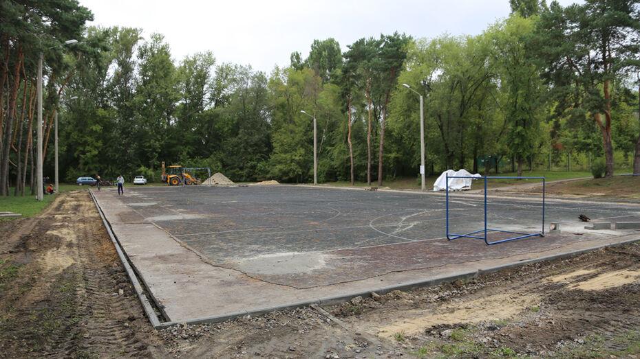 В воронежском парке «Алые паруса» появится баскетбольная площадка