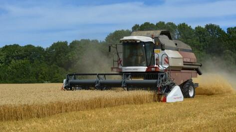 «Россельхозбанк» предоставит воронежскому предприятию дополнительный кредитный лимит