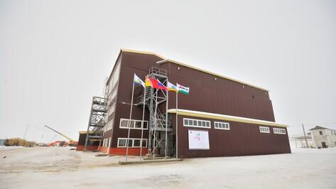 Воронежский «Молвест» первым в России выйдет на мировой рынок премиум-кормов