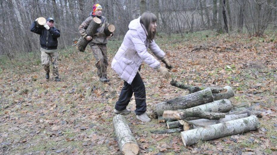 Студентам воронежских вузов придется бесплатно охранять и убирать лес