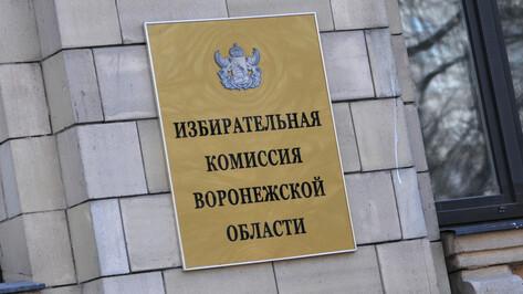 Воронежские единороссы получили 95 мандатов из 110