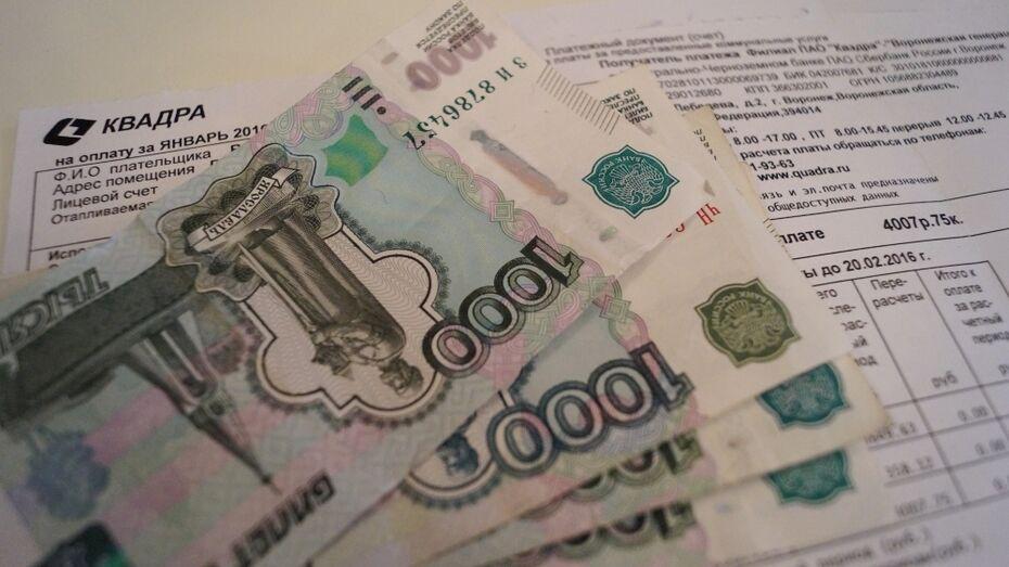 Счета за отопление в Воронеже выросли в 1,5 раза из-за январских морозов