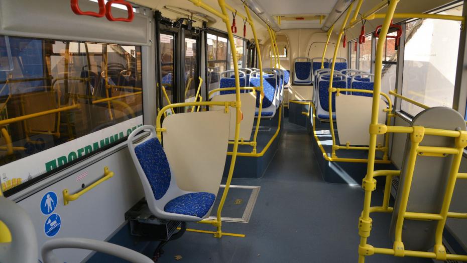 Общественный транспорт Воронежа будет работать в режиме выходного дня