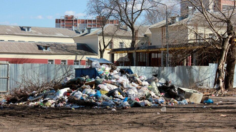Прокуроры уличили воронежских коммунальщиков в плохой уборке контейнерных площадок