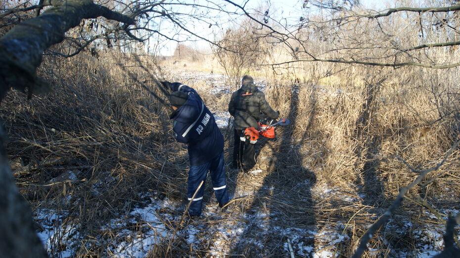 Расчистку русла и берега реки Толучеевка начали в Воробьевке