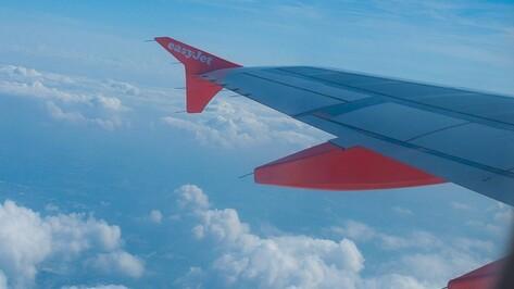 Авиапоток через воронежский таможенный пост за год сократился в 3,3 раза