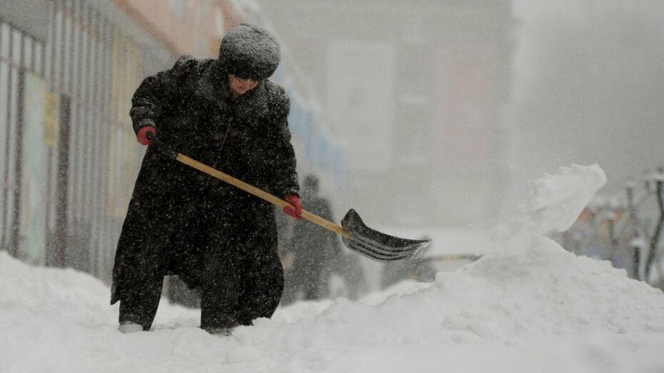Воронежские коммунальщики расчистят дворы по аутсорсингу