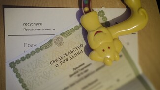 Инструкция РИА «Воронеж»: госуслуги. Как оформить свидетельство о рождении
