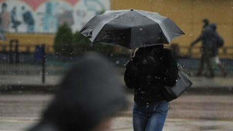 Мокрый снег опечалит воронежцев на неделю