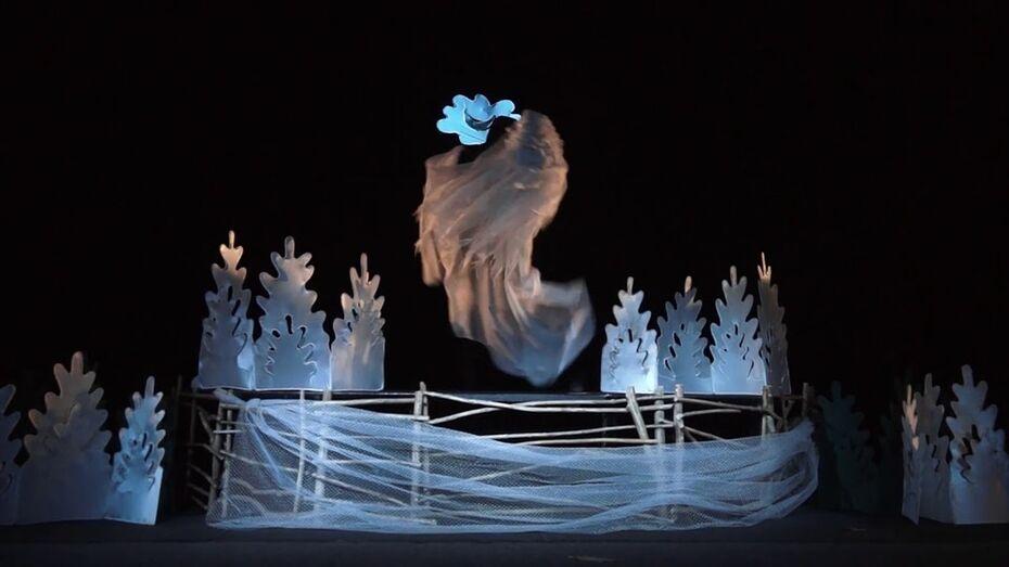 Новогодний спектакль выложил в YouTube воронежский кукольный театр