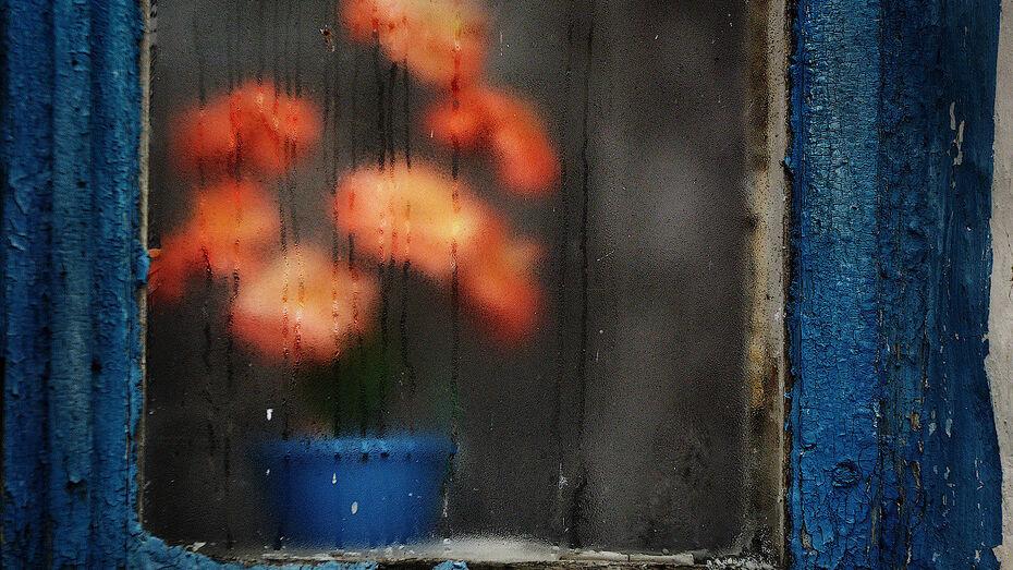 Аналитики назвали среднее для Воронежа количество дождливых дней в октябре