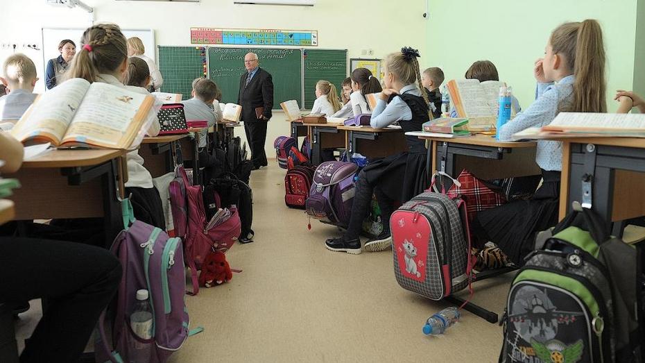 Каникулы в воронежских школах все же перенесли
