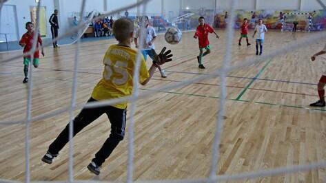 Голландцы и испанцы сыграют в футбол в Воронеже