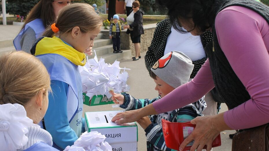В Семилуках начался второй этап благотворительной акции «Белый цветок»