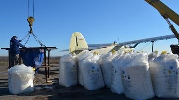 В Нижнедевицком районе приступили к подкормке озимых с помощью авиации