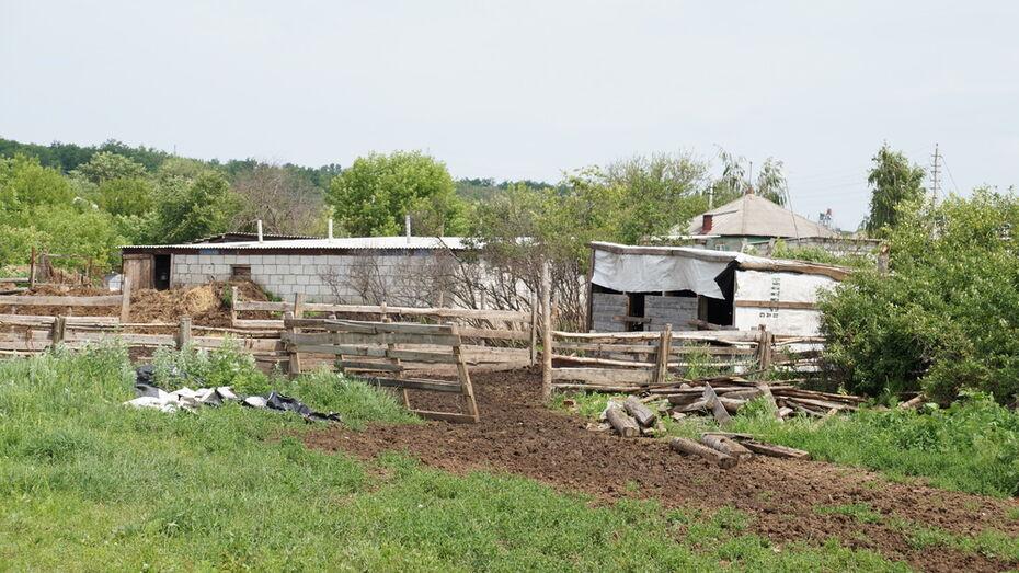 Богучарец незаконно построил ферму