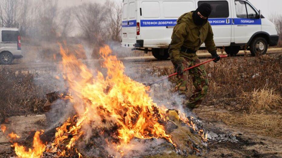 В Воронеже сожгли 70 кг наркотиков