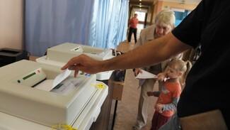 Приглашения на выборы получат 1,8 млн жителей Воронежской области