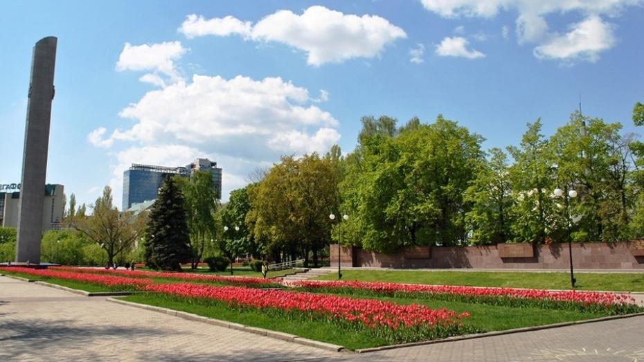 В Воронеже у мемориалов высадят более 77 тыс тюльпанов