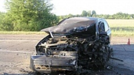 Под Лисками при ударе Audi об дерево погибла девушка