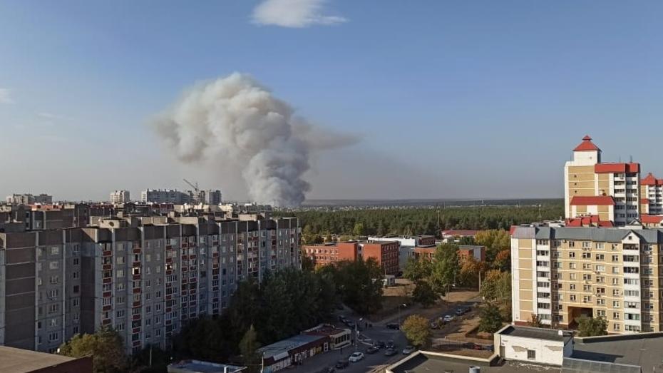 Больше 40 пожаров одновременно бушуют в Воронежской области