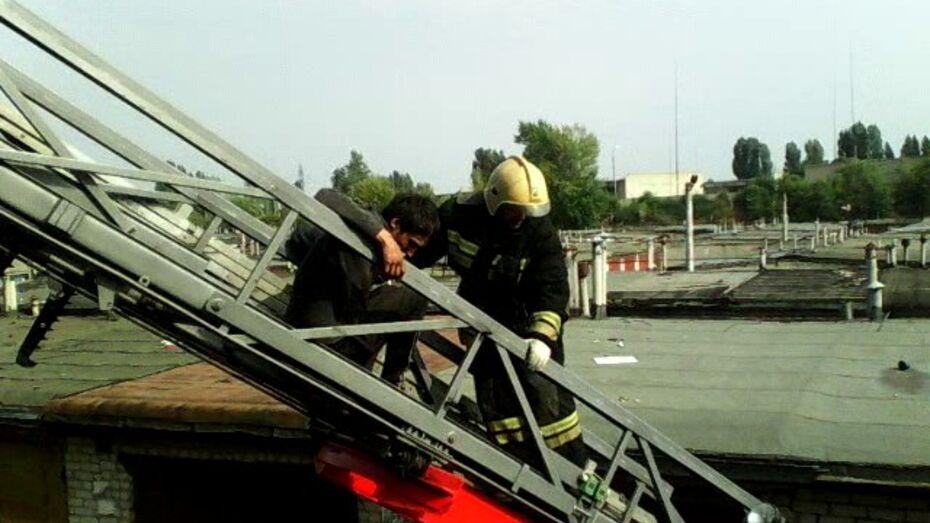 Спасатели сняли воронежца с 15-метрового тополя