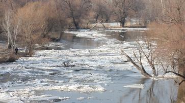 В Борисоглебске мост через Хопер ушел под воду
