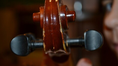 Камерный оркестр воронежского музыкального колледжа даст бесплатный концерт