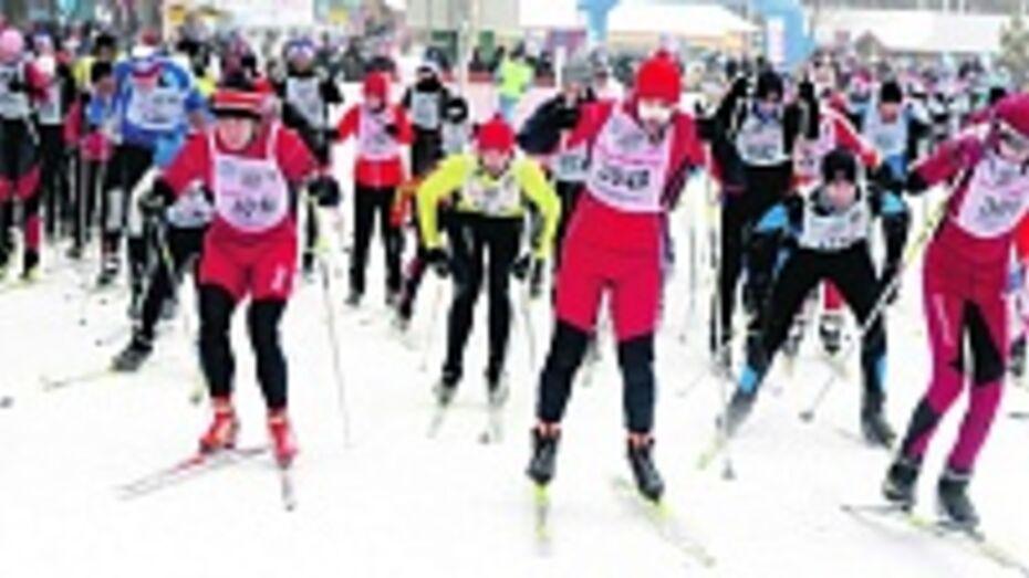 На «Лыжне России» в Воронежской области в этом году ожидают не менее 5 тысяч участников