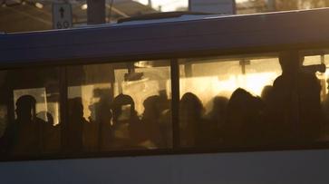 Воронежские перевозчики потратили на новые автобусы 577 млн рублей
