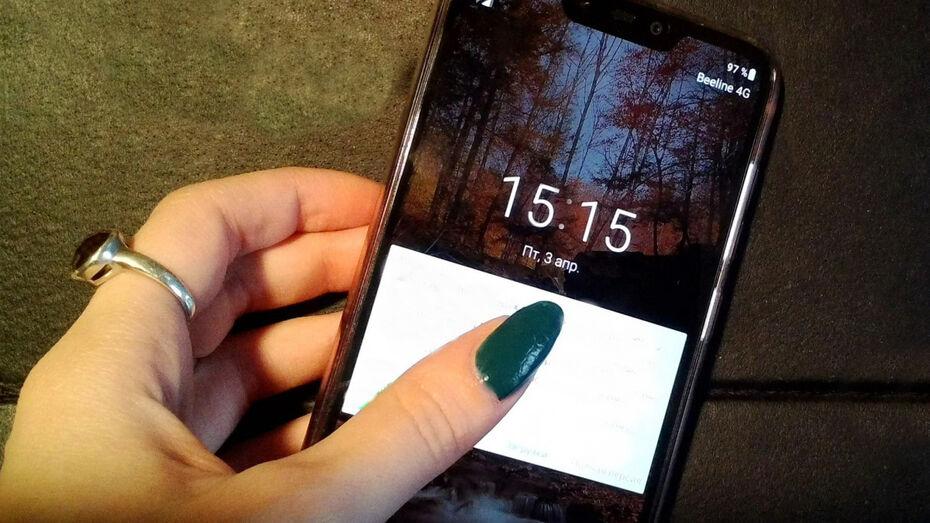 Специалисты Росреестра проконсультируют воронежцев по телефону