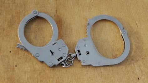 Полицейские поймали ограбившего беременную женщину воронежца