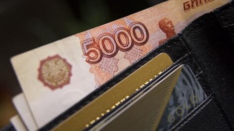 Доходы жителей Воронежской области за год уменьшились на 3,4%