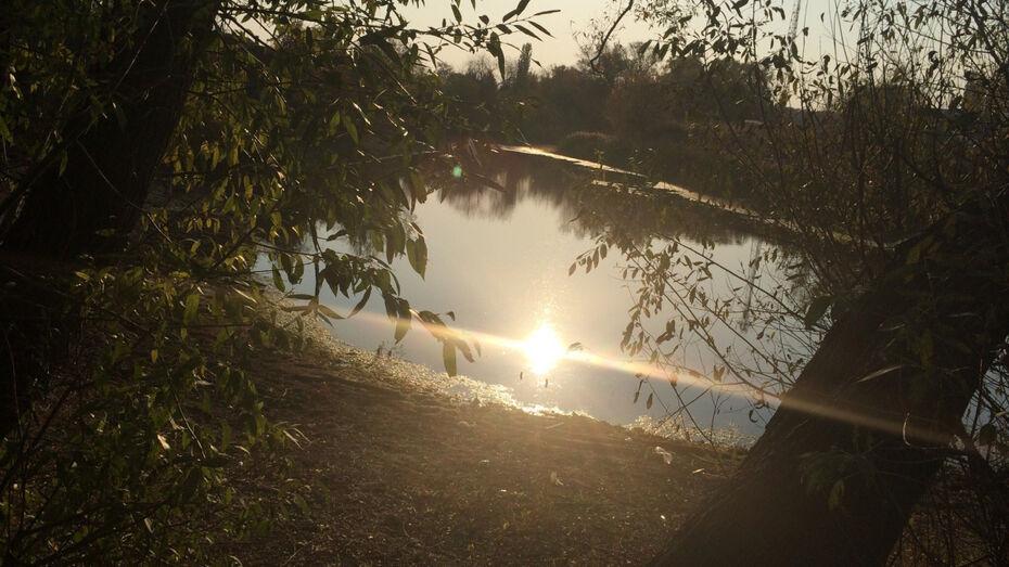 СК: в Воронежской области дед нырнул за внучкой в реку с обрыва
