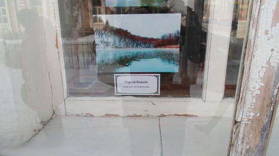В Павловске сделали выставку зимних фотографий в окнах библиотеки