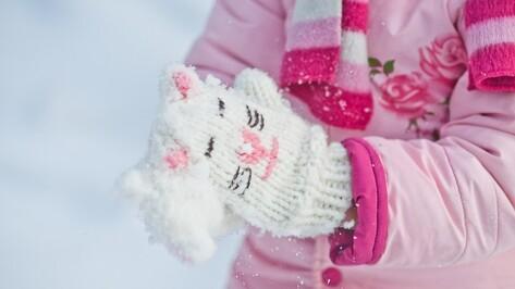 К концу рабочей недели в Воронеже потеплеет до 0 градусов