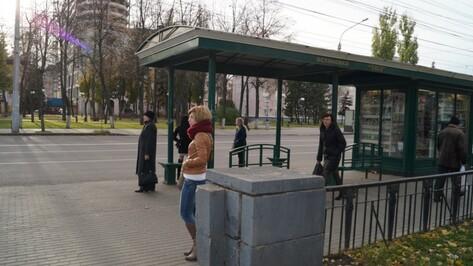 Власти Воронежа подобрали перевозчика на невостребованные автобусные маршруты
