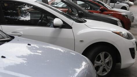 Оставлять машины возле парка запретят в Воронеже в середине недели