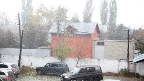 Аннинцев порадовал первый снег