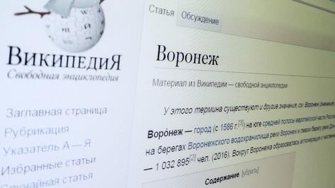 Кто защитил Воронеж. Администратор «Википедии» – о патрульных и вандалах