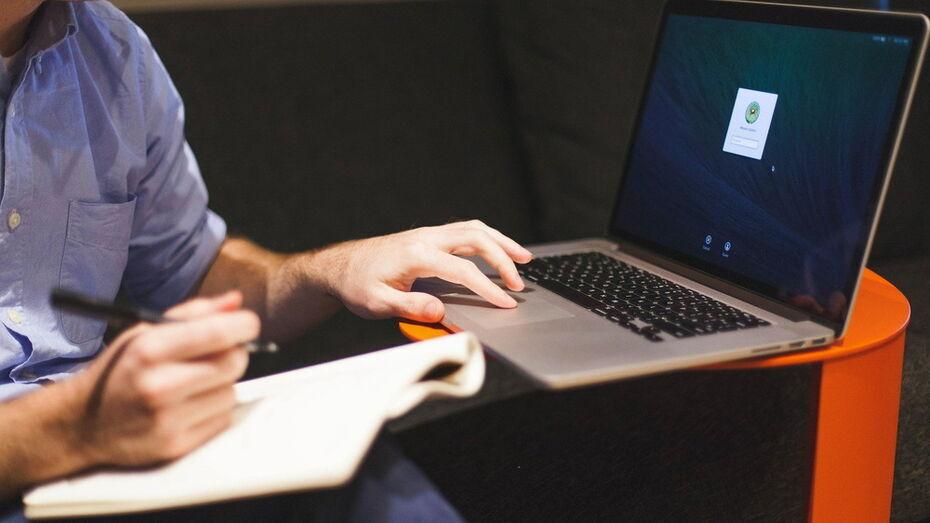 Интернет-мошенники под видом сотрудников борисоглебского склада кинули воронежца на 4,3 млн