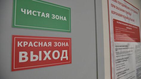 Работающие в «красной» зоне врачи поздравили воронежцев с Новым годом
